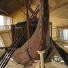 古代エジプト文明が解く日本との意外な関係!日本とエジプトには多くの共通点があった
